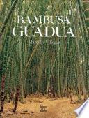 libro Bambusa Guadua