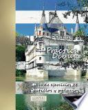 Práctica Dibujo   Xl Libro De Ejercicios 28: Castillos Y Palacios