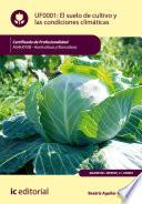 El Suelo De Cultivo Y Las Condiciones Climáticas. Agah0108