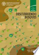 libro Descubriendo Los Bosques