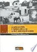 libro Globalización Y Perspectivas De La Integración Regional