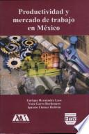 libro Productividad Y Mercado De Trabajo En México