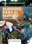 libro Subsidio Para El Empleo
