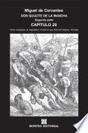 Don Quijote De La Mancha. CapÍtulos Escogidos. Segunda Parte. Capítulo 29 (texto Adaptado Al Castellano Moderno Por Antonio Gálvez Alcaide)