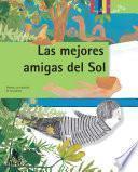 Las Mejores Amigas Del Sol. Plantas: La Condición De Las Plantas