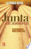 libro Junta De Sombras. Estudios Helénicos