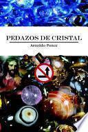 libro Pedazos De Cristal