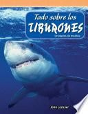 Todo Sobre Los Tiburones (all About Sharks)