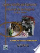 Cuenta Satélite Del Subsector Informal De Los Hogares 1993 1999. Cuentas Por Sectores Institucionales. Scnm