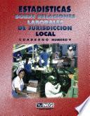 Estadísticas Sobre Relaciones Laborales De Jurisdicción Local. Cuaderno Número 9