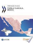 Ocde Estudio Territorial: Puebla Tlaxcala, México 2013