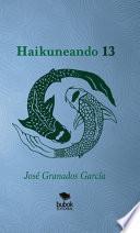 libro Haikuneando 13