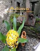 libro Adimu: Nuevas Recetas Para Los Orishas