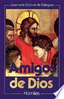 libro Amigos De Dios