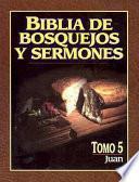 libro Biblia De Bosquejos Y Sermones Rv 1960 Juan
