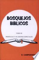 libro Bosquejos Biblicos