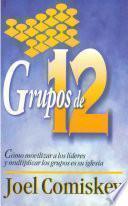 libro Grupos De Doce