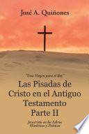 libro Las Pisadas De Cristo En El Antiguo Testamento