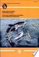 Merluzas Del Mundo (familia Merlucciidae)